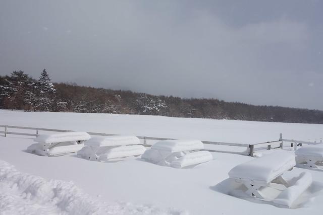 ベンチが雪のインゴットに占拠