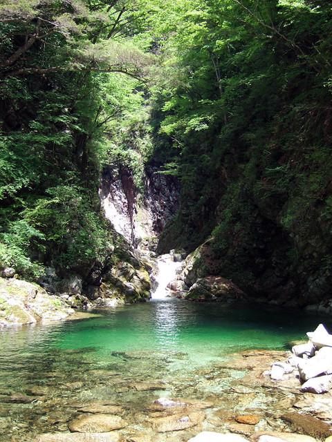 尾白川渓谷1つ目の見どころスポット、千ヶ淵に到着です。 尾白川渓谷