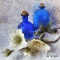 .. bottles and flowers .. (Kerstin Frank art) Tags: flowers stilllife painting bottles manipulation bluebottles autopainter ipadart kerstinfrankart ipadgraphy ipadedit ipadgraphers