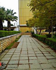 Tishreen university in lattakia.. syria (Young syrian's Lens -   ) Tags: syria  lattakia latakia