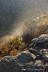 Sun Shower on Short Off Mountain (R. Keith Clontz) Tags: sunny blueridgemountains linvillegorge appalachianmountains waterspray northcarolinamountains mossyrocks sunlitshower shortoffmountain gorgecanyon rkeithclontz blueridgepics blueridgelight windblownrain tablemountainpinetree