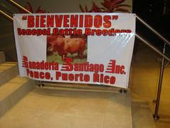 """PORTO RICO - Convenção Mundial da Raça 2011  (1) • <a style=""""font-size:0.8em;"""" href=""""http://www.flickr.com/photos/92263103@N05/8568807124/"""" target=""""_blank"""">View on Flickr</a>"""