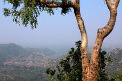 India // Rajasthan 2012-11-01