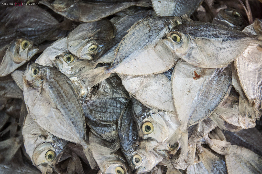 The world 39 s best photos of danggit and fish flickr hive mind for Dried salted fish