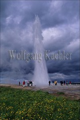 40054372 (wolfgangkaehler) Tags: flowers flower tourism iceland energy europe european tourist tourists reykjavik steam geyser volcanic erupt thermal icelandic geysers goldencircle thermalspring geysirhotspringarea