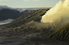 Fog volcano (narenrit) Tags: bromo mountain mist light sun sunrise cloud sky morning valcano tree view beauty hill top scenic indonesia tropical asia asian east cliff travel trip mount sapatate different village country