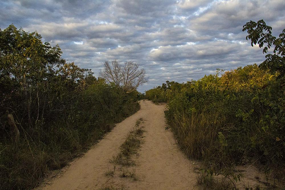 Caminho de volta do Parque Grande Sertão Veredas