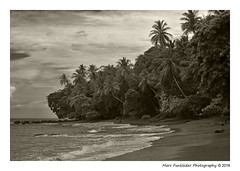 San Pedrillo, Corcovado National Park, Costa Rica (Marc Funkleder Photography) Tags: playa plage beach sanpedrillo costarica nature sauvage wild monochrome sepia nikond750 nikon28300 cocotier coconuttree bordurephoto extrieur paysage rivage cte calme coast quiet outside corcovado nationalpark blacksand sablenoir