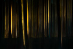 Secrets (Anneke Jager) Tags: anneke jager icm canon mood moody sfeer conceptual concept fineart