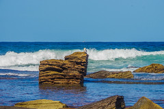 King of the Castle (Dovid100) Tags: blue bird cormorant sydney monavale australia waves