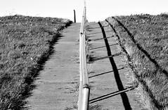 handrail (Fearghl Nessbank) Tags: nikon d700 blackwhite monochrome bw handrail art blackwhitephotos mono sw