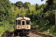 Into the forest (Teruhide Tomori) Tags:      japan railway railroad kyoto shishostation local landscape maizuru tango forest green  kyototangorailway ktr train