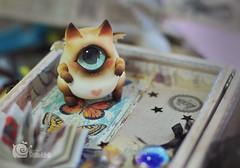 shdp03 () Tags: cyclops kitties