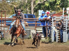 Side Step (clarkcg photography) Tags: calf roping rope horse work rodeo hobby practice jackpot rentiesville gettogether locals connorsropingteam