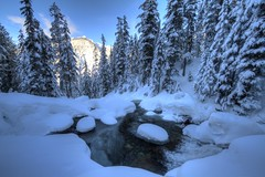 Cloaked (Andrew E. Larsen) Tags: winter white snow cold snowshoeing wintersky snoqualmiepass papalars andrewlarsen andrewlarsenphotography