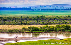 Morning Rider (Feng Wei Photography) Tags: china travel color nature beautiful beauty horizontal river relax landscape scenery colorful asia view outdoor horizon relaxing scenic vivid peaceful charm vista xinjiang prairie charming pastoral relaxed grassland magical rider kazakh ili yili zhaosu normad normadic keerkante