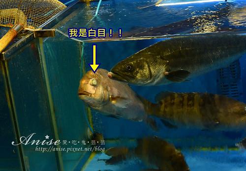 鷺梁津海-市場012.jpg