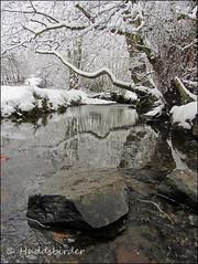 Brook (Huddsbirder) Tags: snow work canon sx220hs