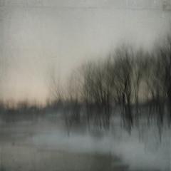 (pixOlga) Tags: trees winter snow motion blur sunrise river icm montrealphotowalk littledoorstoelsewhere