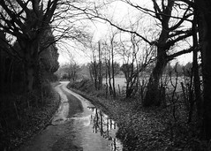 Blakeshall (Riverman___) Tags: blackandwhite film nikon kodak tmax voigtlander 100 f2 40mm nikonf6