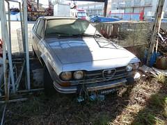 Alfa Romeo Alfetta GTV (Alessio3373) Tags: abandoned rust alfa gtv alfaromeo scrap abandonment rustycars abandonedcar rottame abbandono scrapyards scrappedcar alfettagtv alfaromeoalfettagtv alfaromeogtv116 gtv116