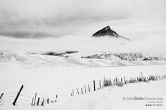 Misty Veil (Kristal Kraft ~ DenverDwellings) Tags: ranch winter usa mist snow cold clouds fence colorado veil northamerica highcountry mountainpeak cloudsstormsunriseandsunset