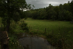 France 2012 (Terrebel) Tags: trees france water forest cabin stream gras