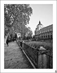 Vista del exterior del palacio II / Exterior view of the palace II (A. Jimnez) Tags: madrid b espaa alex arbol ventana j edificio cruz cupula belmonte palacio albacete aranjuez jimnez a trayo