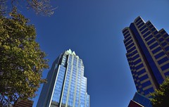 Tall Buildings and Blue Skies (thor_mark ) Tags: trees day cities clear urbanexploration blueskies downtownskyline frostbankbuilding tallbuildings downtownaustin lookingeast project365 colorefexpro nikond800 f1raceweekend