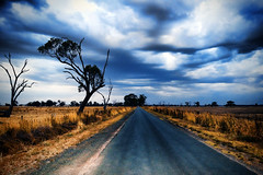 Storm over dry, dusty fields (Indigo Skies Photography) Tags: road camera trees storm colour clouds digital rural lens photography photo aperture nikon exposure flickr earth farm country picture dry australia wideangle victoria iso deadtree drought colourful dust stanhope paddocks nikond90 raychristy
