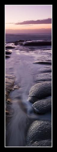 light sea macro green water work purple natural pano crop 31 sux