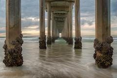 Scripps Pier Got Barnacles (mojo2u) Tags: ocean california beach pier sandiego lajolla barnacles pillars scrippspier nikon2470mm nikond800