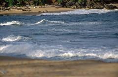 19941220-006 (climbhigh1001) Tags: continentoceania countryunitedstates statesushawaii hawaiikauai poipu poipubeachpark tagged year1994
