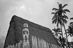 solo statue (The Official Holly Ferocious) Tags: city 2 bw white black silver island hawaii wooden big nikon statues hut pro nik 24mm refuge quantaray d90 effex