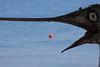 Fooled me once (Elios.k) Tags: red sea summer vacation fish horizontal outdoors island focus perspective dry nopeople depthoffield greece kefalonia forcedperspective buoy swordfish sami cephalonia karavomylos