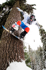 Perched Strike (Kevin J Salisbury) Tags: trees winter sports pine snowboarding nikon fisheye pacificnorthwest extremesports snowboarder sportsphotography wintersports actionsports nikkor105mm nikond700