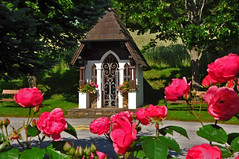 Unsere Hauskapelle - our chapel /Explore (Mariandl48) Tags: roses flower tree shrine blumen chapel rosen linde kapelle marterl getreide wenigzell sommersgut