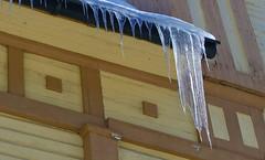 Icicles Naisvuoritalo Mikkeli (EilaK: Visit my nice galleries too!) Tags: icicles