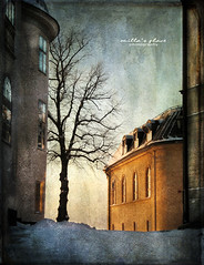 Never Ending Winter (Milla's Place) Tags: city winter snow tree buildings sweden stockholm textures textured riddarholmen distressedjewell magicunicornverybest magicunicornmasterpiece kerstinfrankart