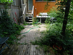 Toronto Playter Estates backyard weeding before by Paul Jung Gardening Services (Paul Jung Gardening Services) Tags: weeding torontogardencleanup broadview pauljunggardeningservices