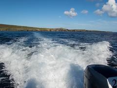 Zodiac cruising around Fetlar (Nanooki ) Tags: scottishisles shetlandislands unitedkingdom gb fetlar