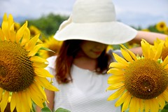 Triple (tez-guitar) Tags: sunflower lady summer yellow flower blossoms bloom woman pentax pentaxart petal