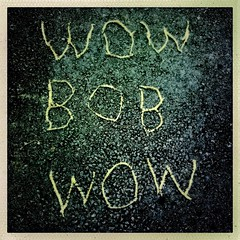 Wow BOB woW (Ronald Hackston) Tags: chestnut tree pollen forestofdean forest writing bob twinpeaks gloucestershire england uk ronniehackston