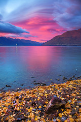 A New Day || LAKE WAKATIPU || QUEENSTOWN (rhyspope) Tags: nz new zealand queenstown lake wakatipu rhys pope rhyspope canon 5d mkii sunrise sky clouds autumn fall leaves rocks foliage water nature