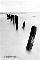 Groyne (ScudMonkey) Tags: groyne c2016paulbradley sandsend whitby northyorkshire slowshutter wood post coast beach defence age weather highkey landscape bw blackwhite monochrome canon 6d ef1740mmf4l