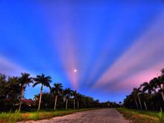 Moon setting into mirrored sunrise DPP 20160819 (Kenneth Cole Schneider) Tags: florida miramar westbrowardwca