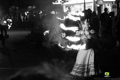 Corso-Fleuri-Selestat-2016-73.jpg (valdu67photographie) Tags: alsace corsofleuri selestat 2016 nuit international basrhin expositions fanabriques fanabriques2016 lego rosheim visite