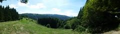 V per Verde, V per Veneto. (michelepiancone) Tags: verde montagna veneto asiago