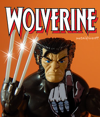 Marvel's The Wolverine (metaldriver89) Tags: marvel marvellegends legend legends logan claws hasbro xmen action figure figures toys superhero superheroes mutant adamantium acba toybiz rage classics jimlee jim lee wolverine 90s tiger stripe tigerstripe xmenclassics brown costume 80s series 6 six astonishing uncanny custom articulatedcomicbookart articulated comic book art actionfigure actionfigures toy toyphotography super hero heroes avengers mutants team outdoor