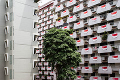 IMG_1990 (hatrofmodernity) Tags: publichousing singapore